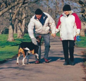 A couple go for a walk and play with their dog to help combat stress, practice stress management, and prevent relapse
